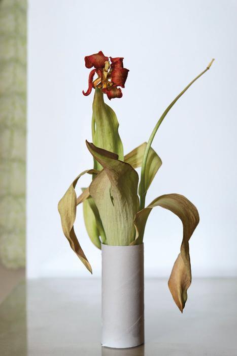 Chih-Chien Wang, Dry Flower and Paper Roll, 2017 épreuve à jet d'encre, 107 × 71 cm