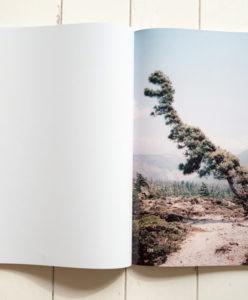 Vincent Delbrouck, Catalogue - Louis Perreault