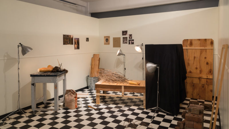 Natascha Niederstrass, Behind Closed Doors: Body of Evidence, exhibition view at Circa, 2018