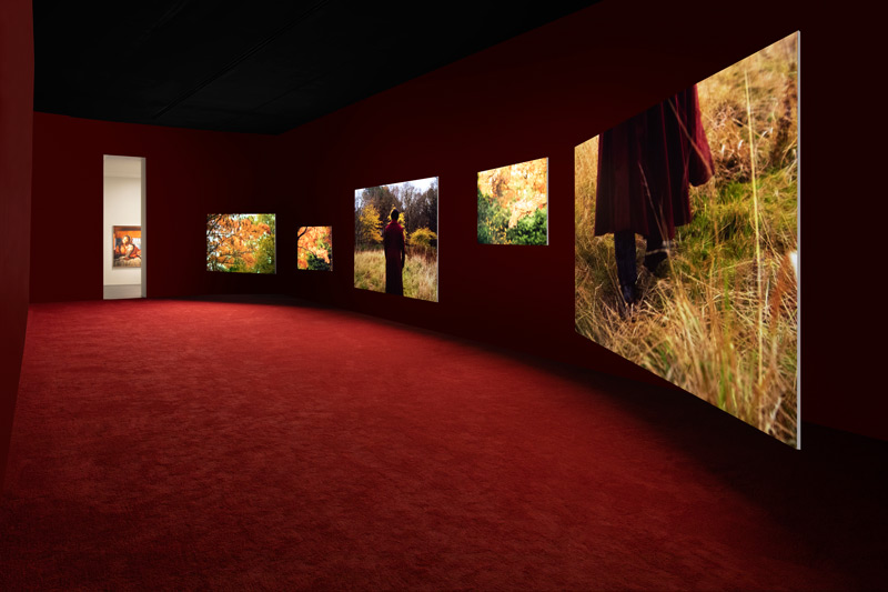 Vue de l'installation Frederick Douglass: Lessons of the Hour, SCAD Museum of Art, 2019